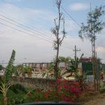 PT Charian Indonesia Rekanan Pemasok Bahan Kimia Exxonmobille  Cepu Limited, Bukan Pengolah Limbah