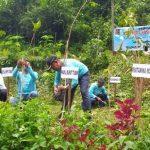 Selamatkan Sumber Mata Air Brubulan, RPS Tanam 1000 Pohon