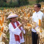 Bupati Huda Dorong Peningkatan Produksi Jagung di Tuban