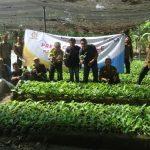 Penuhi Kebutuhan Pasar Global Perhutani Garap Tanaman Biomasa