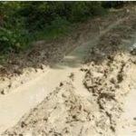 Ayo Dukung Petisi Tolak Pembangunan Jalan Nasional Dengan APBD