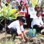 Tanam 2.800 Bibit Tuban Kurangi 31 Persen Kerusakan Mangrove